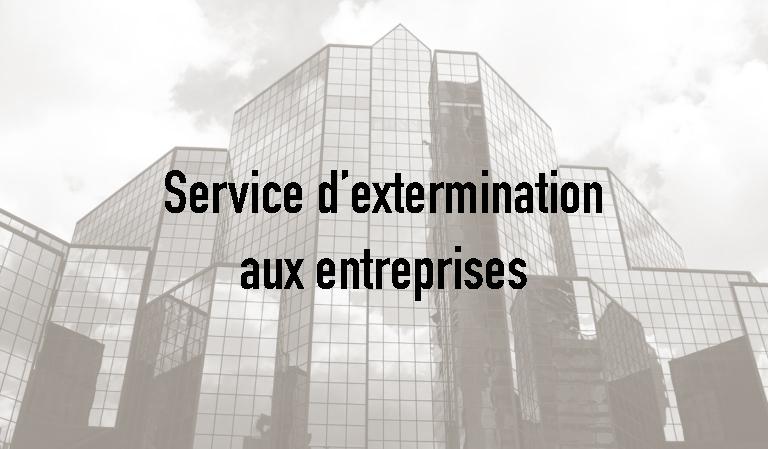Exterminateur commerciale Montréal-Nord, Extermination Falcon, photo