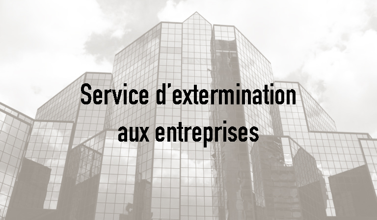 Exterminateur commerciale Rosemont, Extermination Falcon, photo copy
