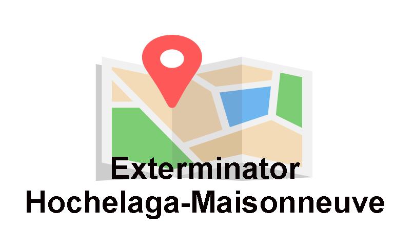 Exterminator Hochelaga-Maisonneuve, Extermination Falcon, maps
