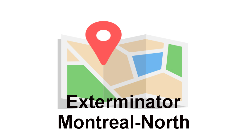 Exterminator Montreal-North, Extermination Falcon, maps